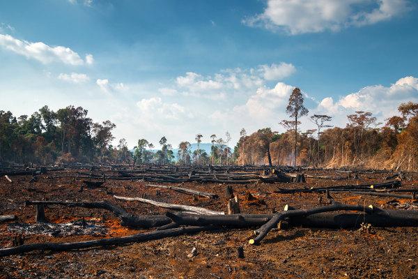 Impactos Ambientais O Que São Exemplos E Mais Brasil Escola