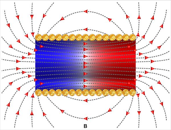 Na figura, é possível observar as linhas de campo magnético e os efeitos de borda no solenoide.