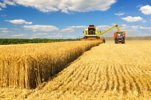 A mecanização da colheita foi uma das inovações trazidas pela Revolução Verde.