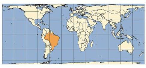 Planisfério produzido com base na projeção de Peters.