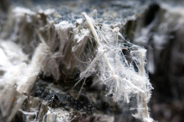 Na imagem, fibras de amianto crisotila.