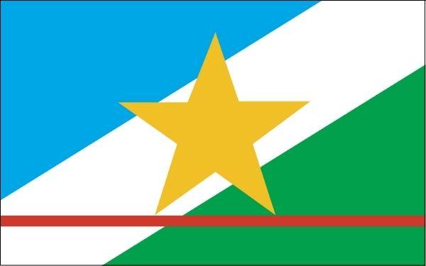 Bandeira do estado de Roraima.