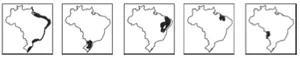Mapas marcando: litoral; parte do Sul, parte do Nordeste; parte do Nordeste; parte do MT e MS.