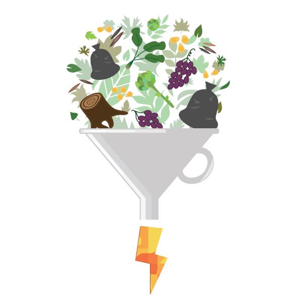 A biomassa consiste na matéria orgânica destinada à fabricação de biocombustíveis e produção de energia.