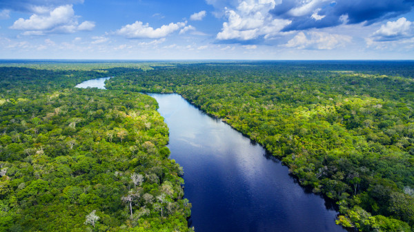 Domínio morfoclimático amazônico