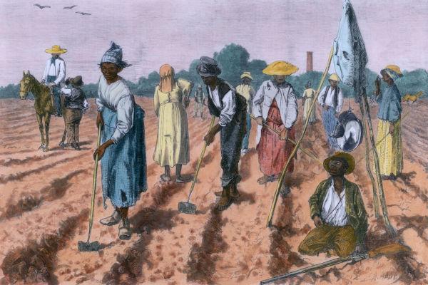 Pintura de pessoas negras escravizadas trabalhando na terra.