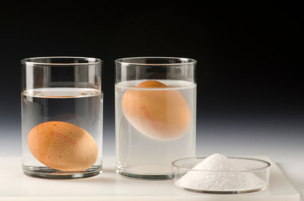 Experimento de adição de sal em um sistema água e ovo.
