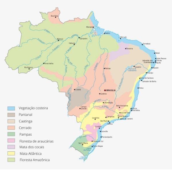 Mapa de vegetação do Brasil.