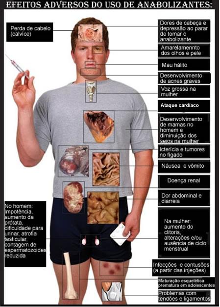 hormonios esteroides e colesterol