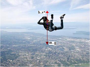 Atuam no paraquedista em queda livre a força de arraste e a força peso