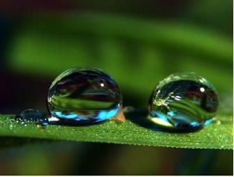A tensão superficial explica o formato esférico da água