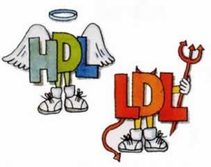 HDL- Bom colesterol; LDL- Mau colesterol