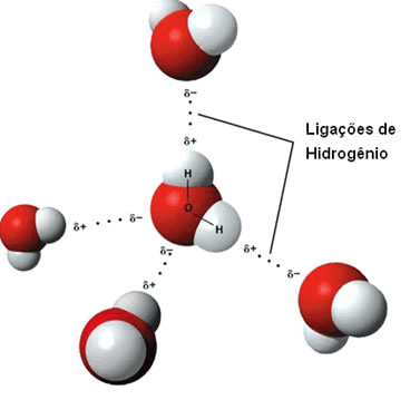 ligacoes de hidrogenio(1) - Ligações Intermoleculares - Ligações de Hidrogênio, dipolo permanente e dipolo induzido