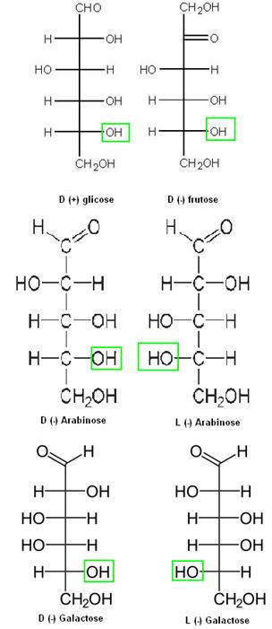 Exemplos de séries dextrogiras e levogiras do grupo das oses.