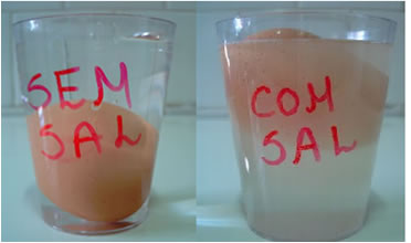 A densidade do ovo é menor do que a da água pura, por isso ele afunda; porém, quando se adiciona sal na água ele flutua.