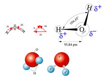 Momento dipolar da molécula de água e sua polaridade