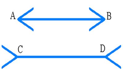 Os dois segmentos de reta possuem o mesmo tamanho