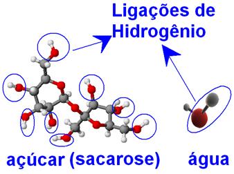 Ligações de hidrogênio em moléculas de açúcar e de água