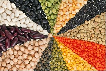 As leguminosas são fontes incompletas de proteínas