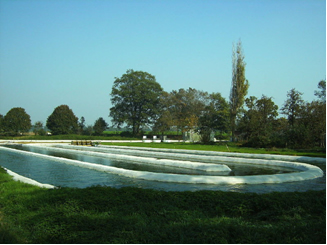 Lagoa utilizada para cultivo de microalgas em larga escala