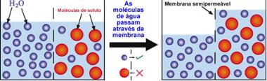 Esquema de processo de osmose
