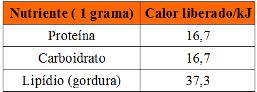 Tabela com nutrientes e calorias liberadas