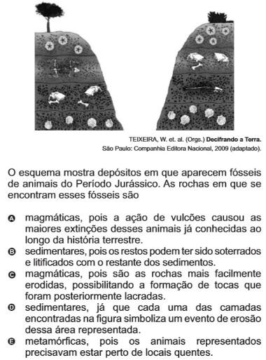Questão da prova de 2010 sobre as rochas e os fósseis