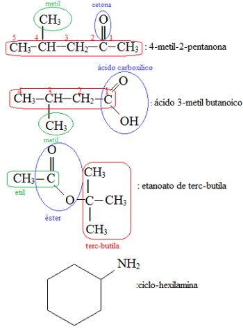 Nomenclatura oficial de compostos orgânicos