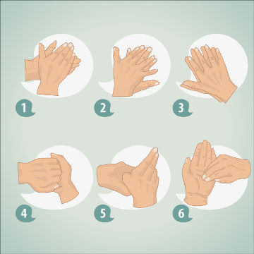 Observe atentamente como deve ser realizada a higienização das mãos