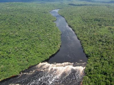 A região da Amazônia é uma das planícies mais conhecidas do mundo