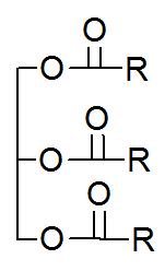 Fórmula estrutural geral de um triglicerídeo