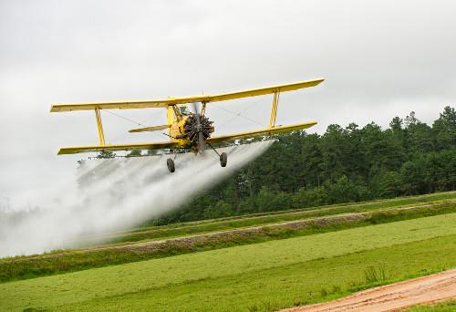 A poluição dos solos e da água e a diminuição da biodiversidade são consequências do uso de agrotóxicos