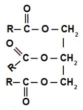 Fórmula estrutural de um triglicerídeo