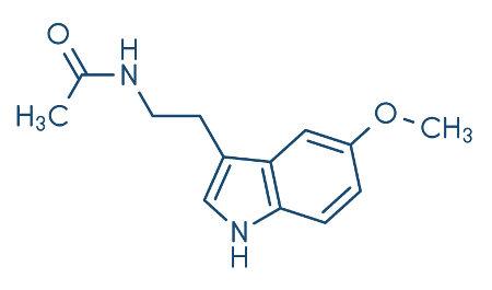 O hormônio melatonina é produzido pela glândula pineal