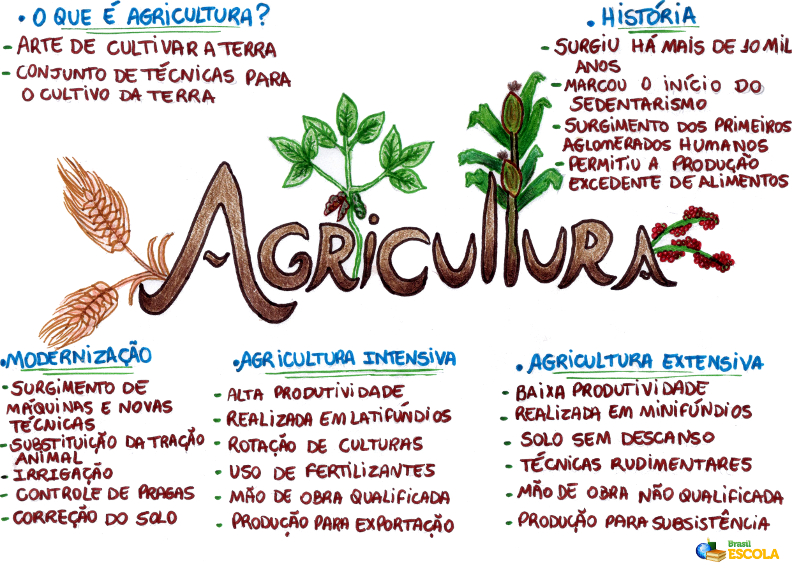 Mapa Mental: Agricultura