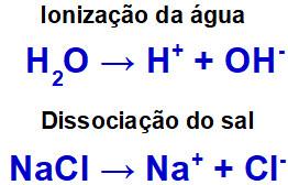 Equações de ionização da água e dissociação do cloreto de sódio