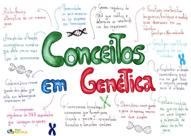 Conceitos genética