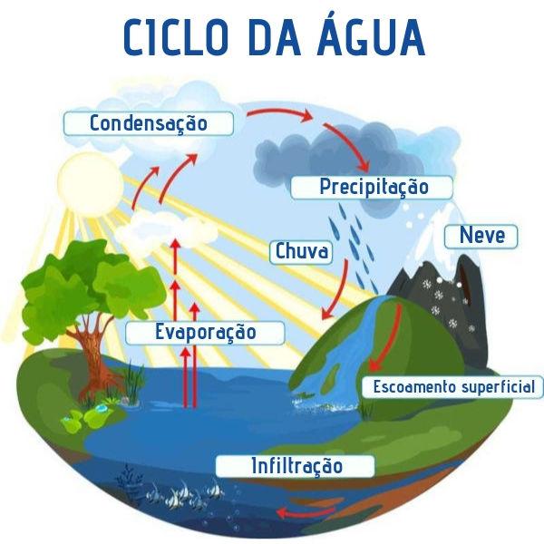 Água - Importância, Ciclo, Distribuição, Falta de Água