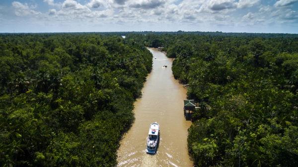 O Rio Amazonas é o principal rio da bacia Amazônica.