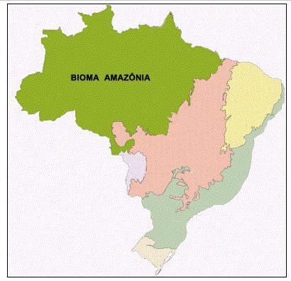 Localização do bioma Amazônia, segundo o Instituto Brasileiro de Geografia e Estatística. (Fonte: IBGE.)