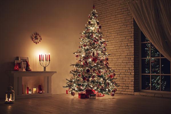 Acredita-se que a árvore de Natal seja originária de práticas pagãs de povos da Antiguidade.