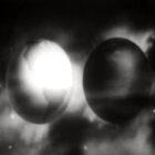 Frame do filme 'Prelude to war'