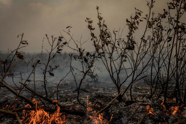Pantanal em chamas / Crédito da foto: Christiano Antonucci/Secom MT